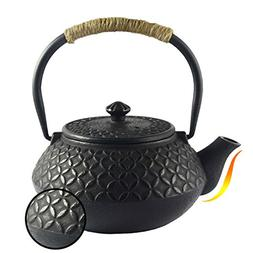 Hwagui - Chinese Iron Vintage Teapot Kettle with Strainer,Bl