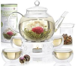 Teabloom Blooming Tea Set - Stovetop Safe Glass Teapot with