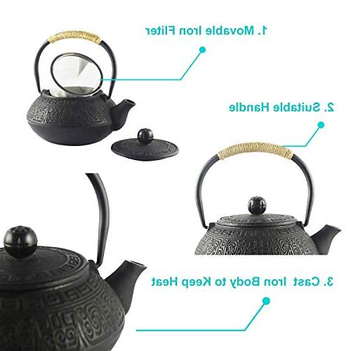 Hwagui Japanese Cast Teapot With Stainless Black Tea Kettle 600ml/20oz