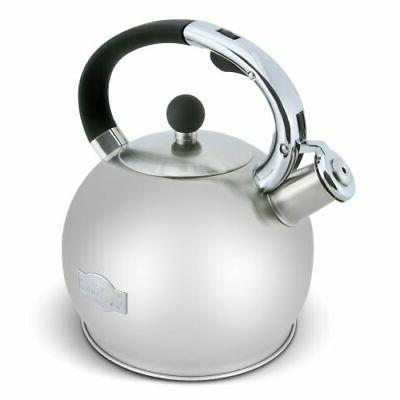 stove top whistling fancy tea kettle stainless