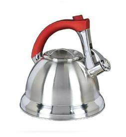 Mr. Coffee 63017.02 Collinsbrook 2.4 Quart Stainless Steel W