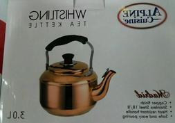 Stainless Steel, Tea Pot  Kettle. Capsule Bottom 3.0 LT. cop