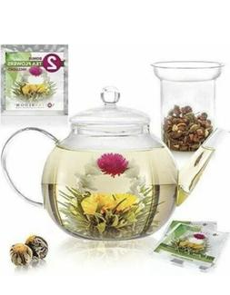 Teabloom Teapot Gift Set – Stovetop Safe Glass Teapot with