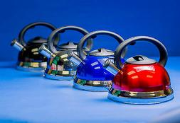 Whistle Blower Tea Kettle- Stainless Steel
